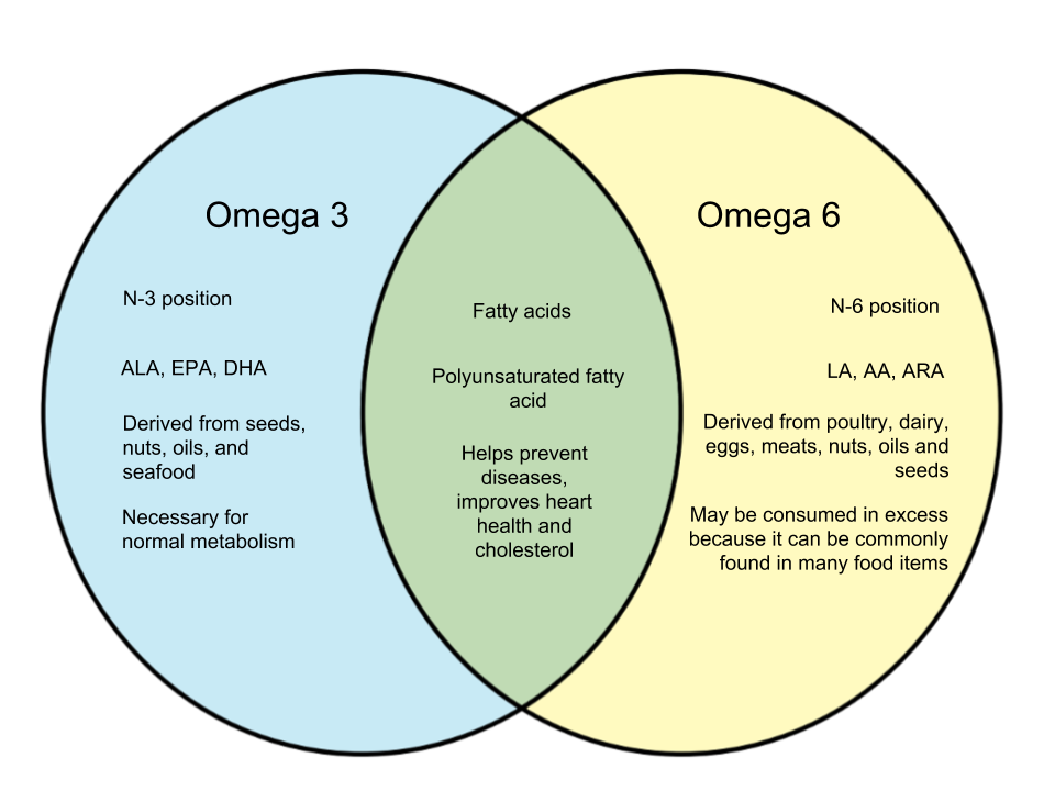 Difference-Between-Omega-3-and-Omega-6.png
