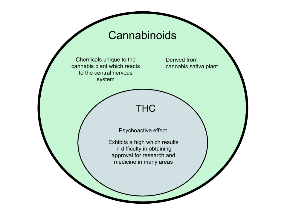 Difference-Between-Cannabinoids-and-THC.png
